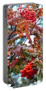 Painted Mountain Ash Berries Portable Battery Charger