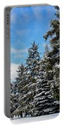 Painted Pines Portable Battery Charger