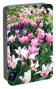 Painted Spring Exhibit Portable Battery Charger