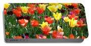 Painted Sunlit Tulips Portable Battery Charger