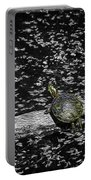 Painted Turtle In A Monochrome World Portable Battery Charger