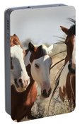 Painted Wild Horses Portable Battery Charger