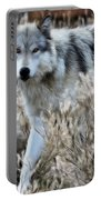 Painted Wolf Portable Battery Charger
