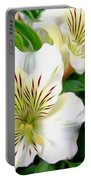 Painterly Alstroemeria Portable Battery Charger
