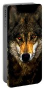 Painting ... Wolf In Aspen Grove Portable Battery Charger