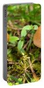 Pair O Mushrooms Portable Battery Charger