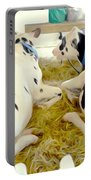 Pair Of Black And White Cows 3 Portable Battery Charger