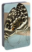 Pair Of Citrus Swallowtail Butterflies  Portable Battery Charger