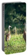 Pair Of Cranes Portable Battery Charger