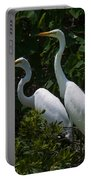 Pair Of Herons Portable Battery Charger