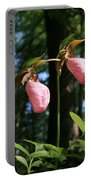 Pair Of Pink Lady Slippers  Portable Battery Charger