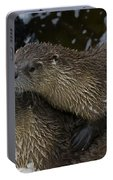 Pair Of River Otters   #1301 Portable Battery Charger