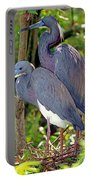 Pair Of Tricolored Heron At Nest Portable Battery Charger
