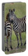 Pair Of Zebra Portable Battery Charger