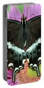 Palamedes Swallowtail Papilio Palamedes Portable Battery Charger