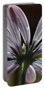 Pale Blue Flower Backlit Portable Battery Charger