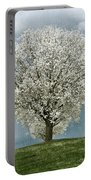 Pale White Tree On Cloudy Spring Day E83 Portable Battery Charger