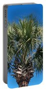 Palm Against Blue Sky Portable Battery Charger