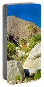 Palm Oasis On Borrego Palm Canyon Trail In Anza-borrego Desert Sp-ca Portable Battery Charger