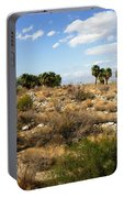 Palm Springs Indian Canyons View  Portable Battery Charger