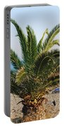 Palm Tree By The Beach Portable Battery Charger