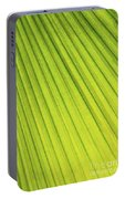 Palm Tree Leaf Abstract Portable Battery Charger