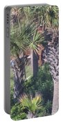 Palm Tree Scenery Portable Battery Charger