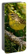Palm Warbler Pictures 38 Portable Battery Charger