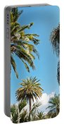 Palms In The Sky Portable Battery Charger