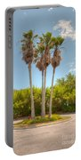 Palms Of Paradise Portable Battery Charger