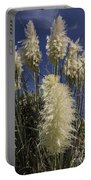 Pampas Portable Battery Charger