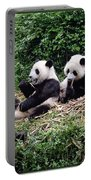 Pandas In China Portable Battery Charger