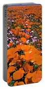 Panorama Califonria Poppies And Hollyleaf Gilia Wildflowers Portable Battery Charger