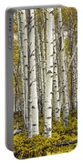 Panoramic Birch Tree Forest Portable Battery Charger