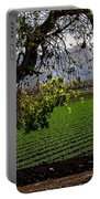 Panoramic Of Winter Lettuce Portable Battery Charger by Robert Bales