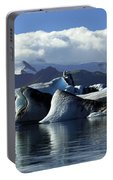 Panoramic View Of Icebergs And Glaciers Portable Battery Charger