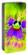 Pansy Power 59 Portable Battery Charger