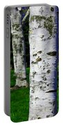 Paper Birch Trees Portable Battery Charger