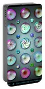 Paperweights And Marbles Portable Battery Charger