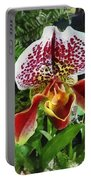 Paph Fiordland Sunset Orchid Portable Battery Charger