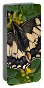 Papilio Machaon Butterfly Sitting On The Lucerne Plant Portable Battery Charger
