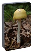 Parasol Mushroom Macrolepiota Sp Portable Battery Charger