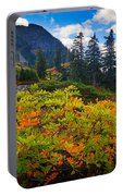 Park Butte Fall Color Portable Battery Charger