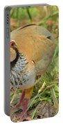 Partridge Portable Battery Charger