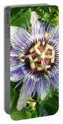 Passiflora Against Green Foliage In A Garden  Portable Battery Charger