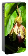 Passion Fruit 10-18-13 By Julianne Felton Portable Battery Charger