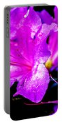Passion Of Purple Portable Battery Charger