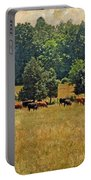 Pastoral Portable Battery Charger