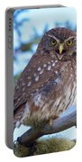 Patagonia Pygmy Owl Portable Battery Charger