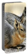 Patagonian Cavies Portable Battery Charger
